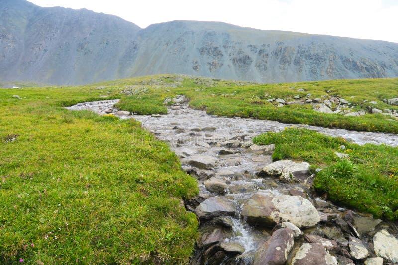 C?rrego da montanha E Montanhas de Altai, R?ssia foto de stock royalty free