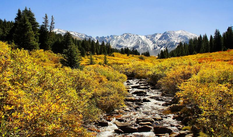 C?rrego da montanha nas Montanhas Rochosas imagem de stock royalty free