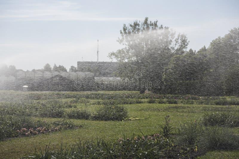 C?sped de riego autom?tico del sistema de irrigaci?n del jard?n imagen de archivo libre de regalías