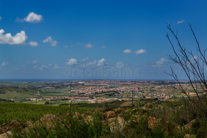 Côté de pays de vigne à Torres Vedras Portugal photographie stock