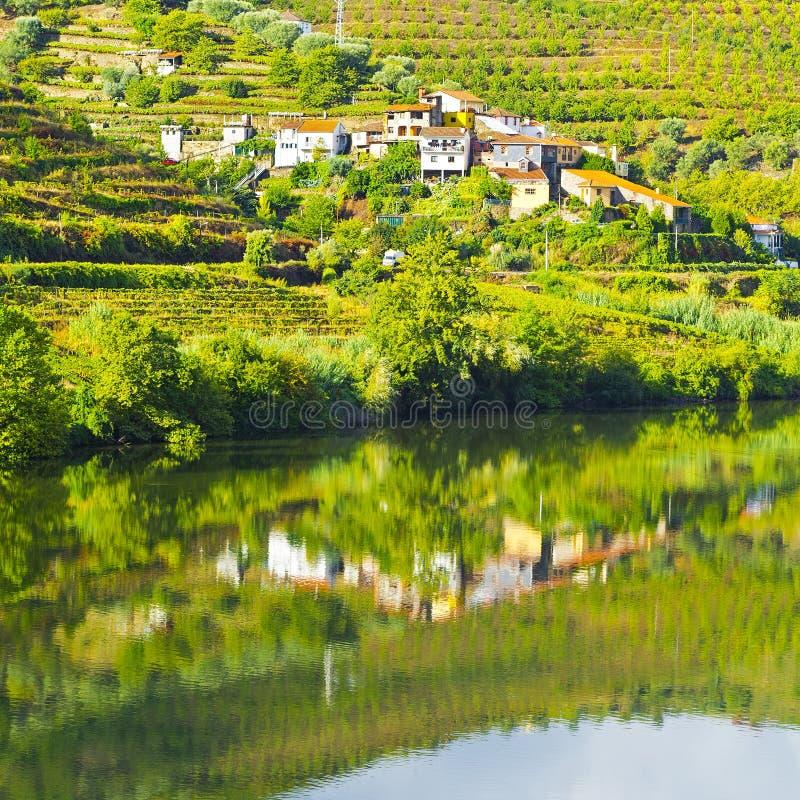 Côtés du fleuve Douro photographie stock