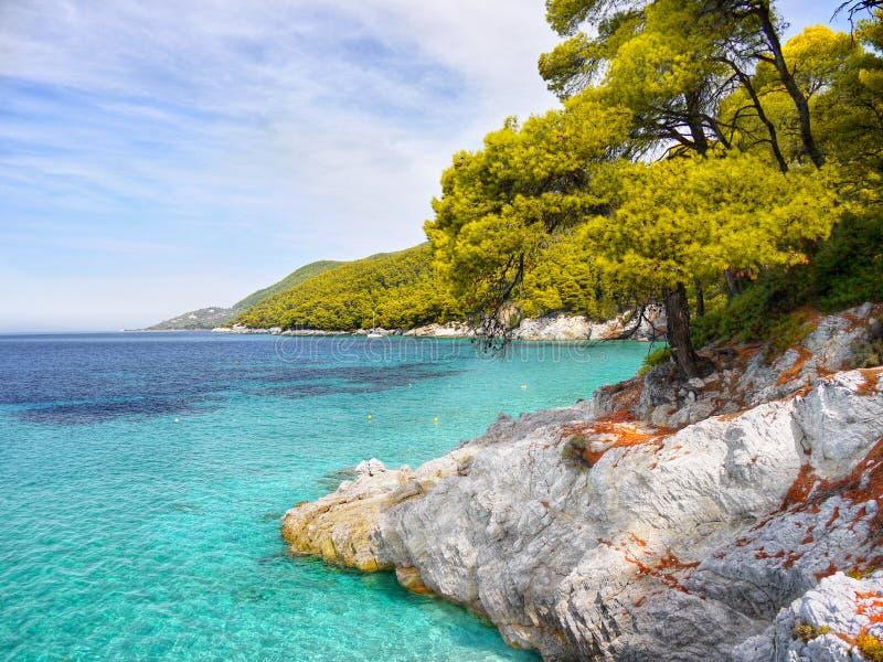 Côte d'île de Skopelos photo libre de droits