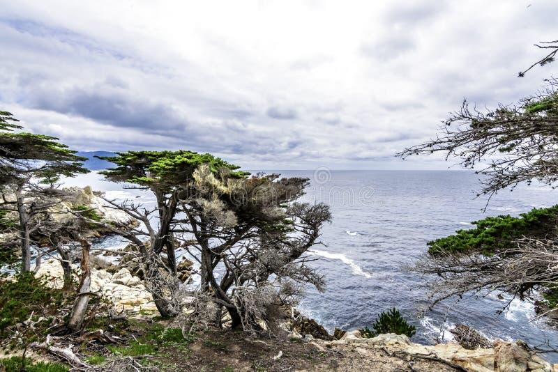 Côte de Big Sur/point de Pescadero à la commande de 17 milles photo libre de droits