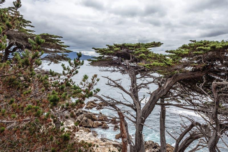 Côte de Big Sur/point de Pescadero à la commande de 17 milles image stock