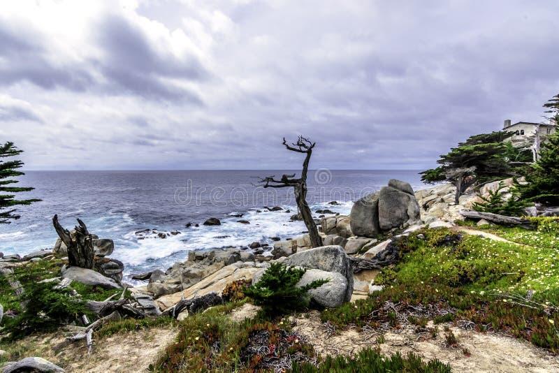 Côte de Big Sur/point de Pescadero à la commande de 17 milles photos libres de droits
