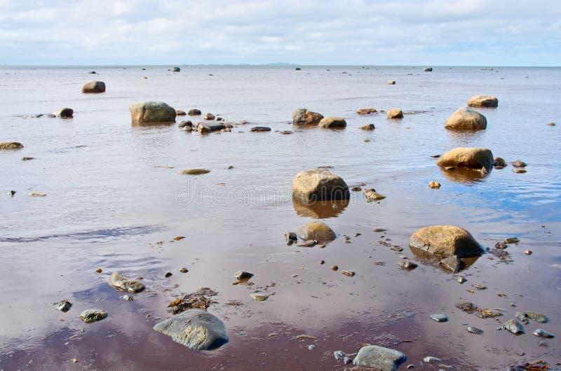 Côte de la mer blanche, Solovki, Russie photo libre de droits