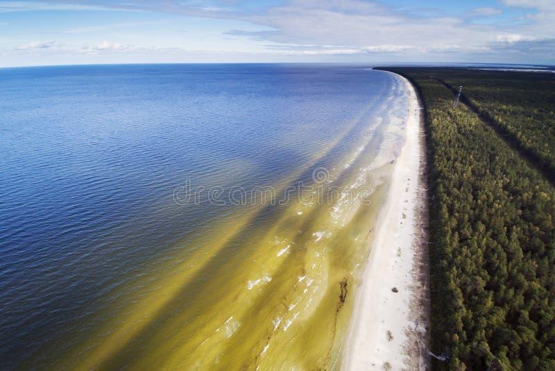 Côte de mer baltique, Lettonie images libres de droits