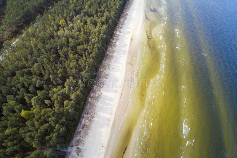 Côte de mer baltique, Lettonie image stock