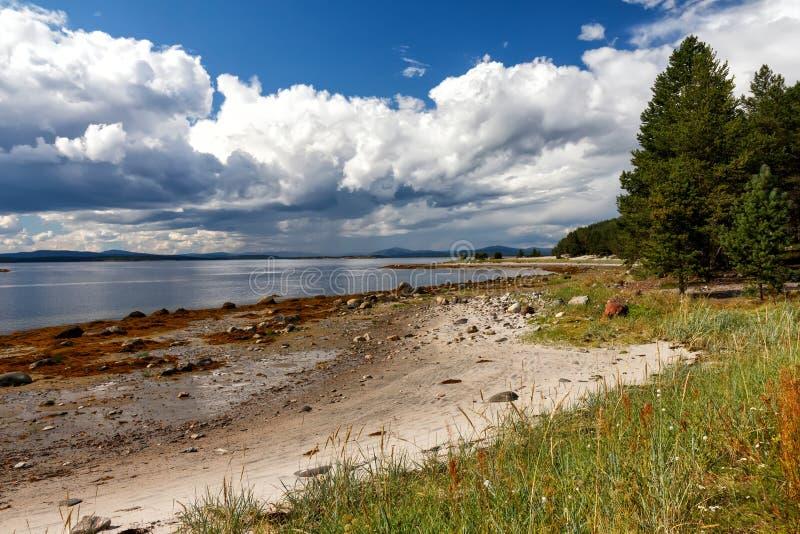 Côte de mer blanche à marée basse, Kola Peninsula, Russie photos libres de droits
