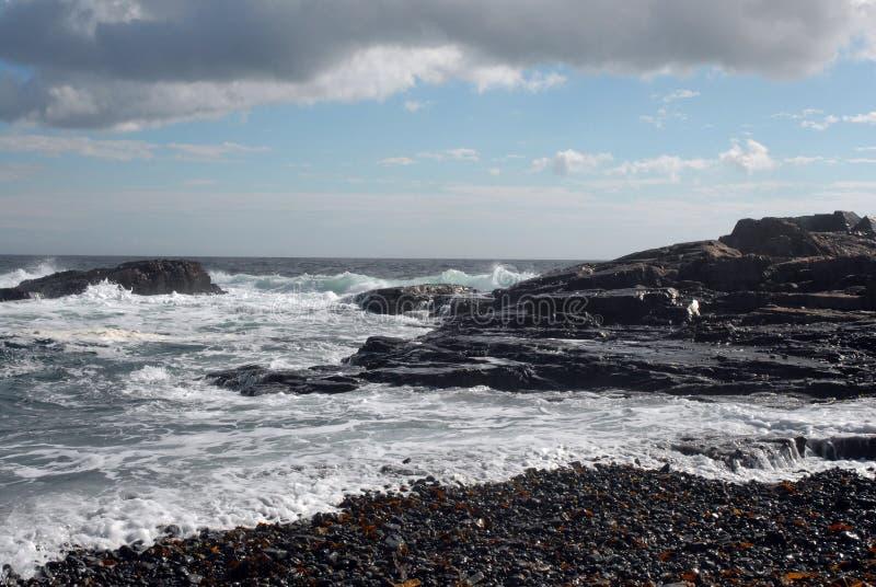 côte Maine photographie stock libre de droits