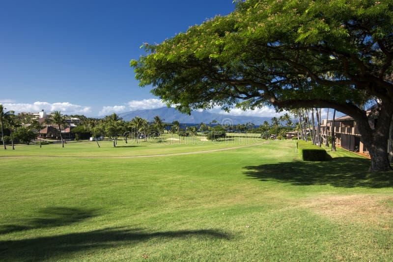 Côte ouest de terrain de golf de Kaanapali de Maui, Hawaï image stock