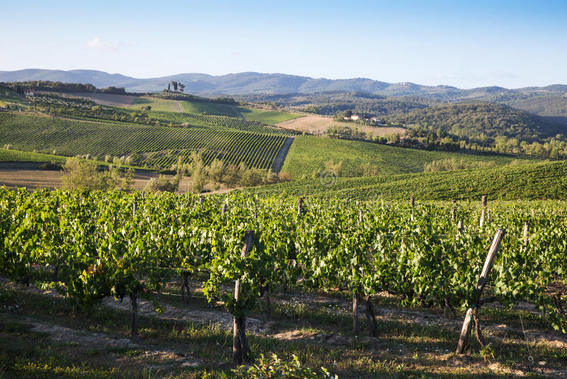 Côtes toscanes images stock