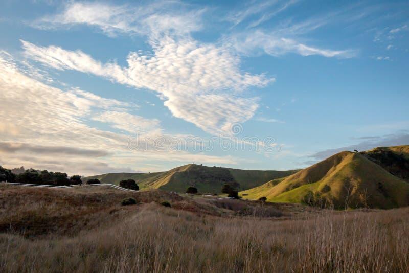 C?tier, rural, paysage ? la plage de Pouawa, pr?s de Gisborne, C?te Est, ?le du nord, Nouvelle-Z?lande photos libres de droits