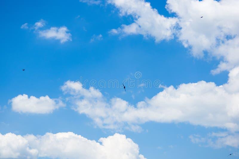 C?u azul brilhante do fundo bonito com nuvens brancas imagem de stock