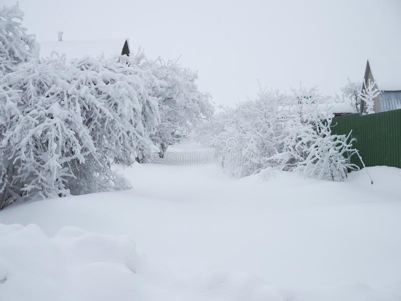 33c ural χειμώνας θερμοκρασίας της Ρωσίας τοπίων Ιανουαρίου Αγροτικός δρόμος που καλύπτεται με το χιόνι και τις κλίσεις στοκ φωτογραφίες με δικαίωμα ελεύθερης χρήσης