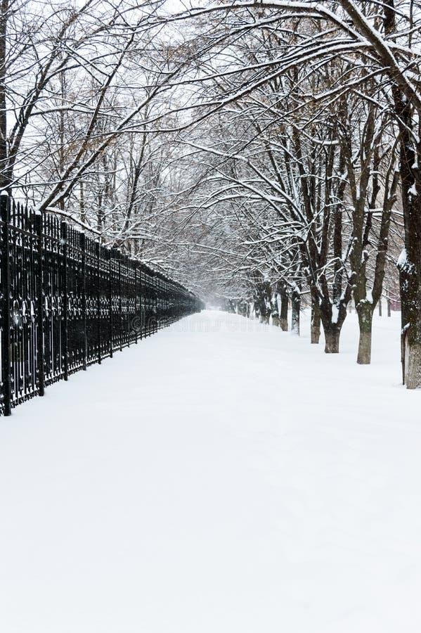 33c ural χειμώνας θερμοκρασίας της Ρωσίας τοπίων Ιανουαρίου Η άποψη σχετικά με μια χιονώδη πορεία, που φεύγει στην απόσταση μεταξ στοκ φωτογραφίες