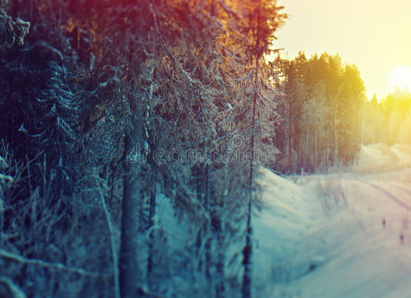 33c ural χειμώνας θερμοκρασίας της Ρωσίας τοπίων Ιανουαρίου φ στοκ φωτογραφία με δικαίωμα ελεύθερης χρήσης