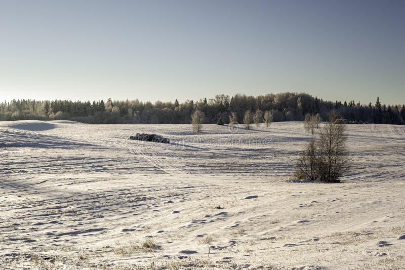 33c ural χειμώνας θερμοκρασίας της Ρωσίας τοπίων Ιανουαρίου Χιονισμένοι τομείς στοκ φωτογραφίες