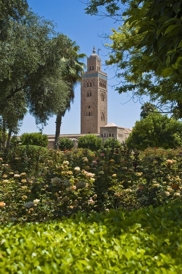 C4marraquexe, Marrocos fotografia de stock