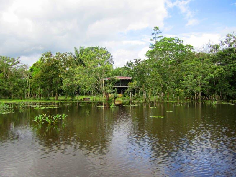 Caño neger- lös livfristad Costa Rica royaltyfria foton