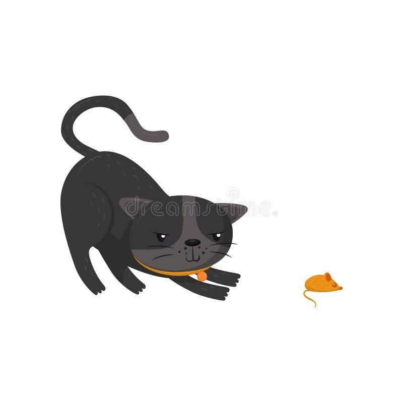 Caça cinzenta do gato no rato Animal de estimação com olhos brilhantes e o colar alaranjado Personagem de banda desenhada do anim ilustração royalty free