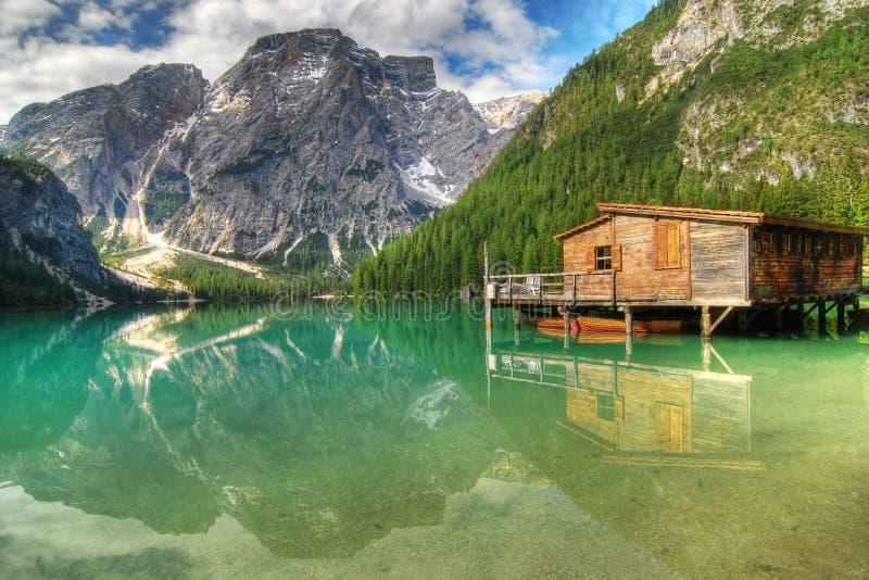 Caça para a reflexão alpina fotos de stock