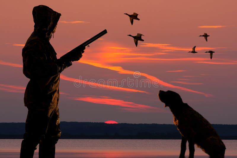 Caçador com um cão no fundo do por do sol fotografia de stock