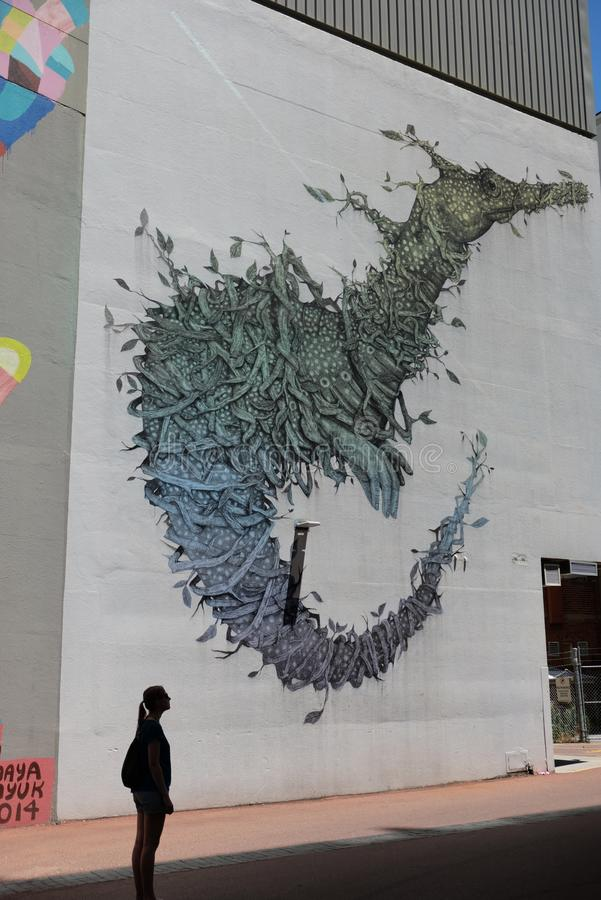 Caçador dos grafittis no dia ensolarado em Perth imagem de stock