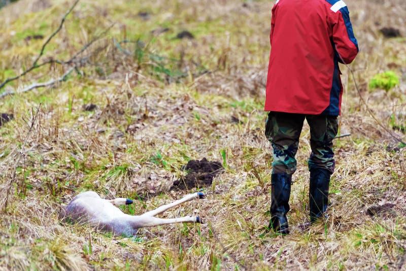 Caçador masculino com seu troféu na floresta Báltico do outono fotografia de stock