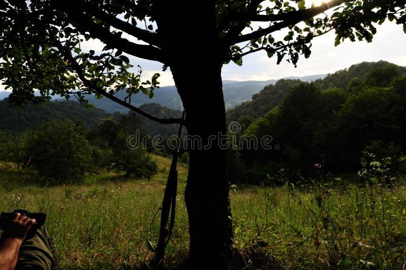Caçador que espera na emboscada pela árvore imagem de stock