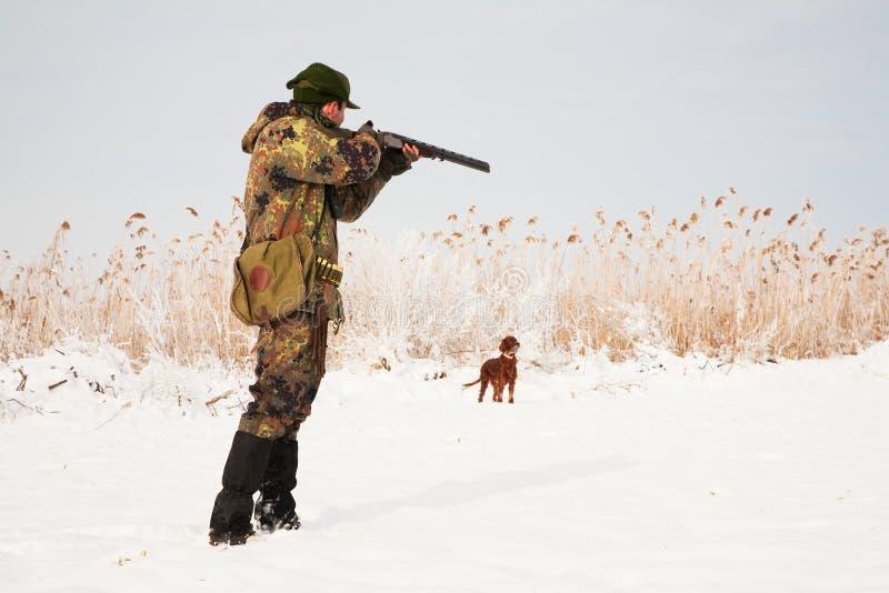 Caçador que visa a caça. Espera do cão de caça imagem de stock royalty free