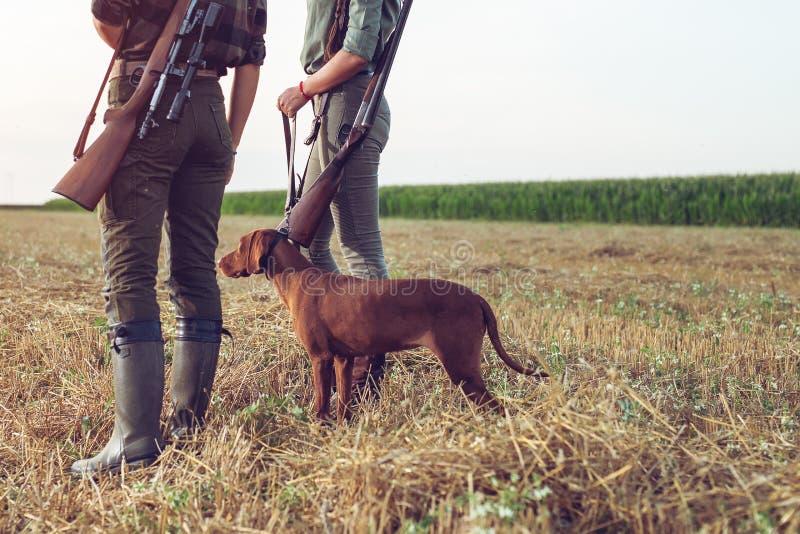 Caçadores das mulheres com cão de caça fotos de stock