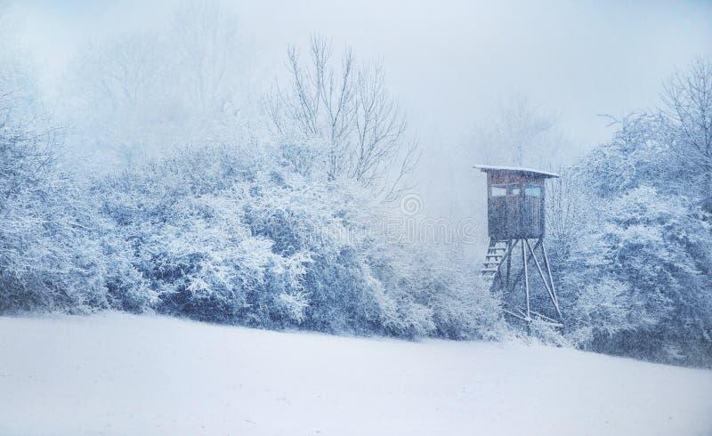 Caçando o couro cru inverno na Europa Central snowfall fotografia de stock