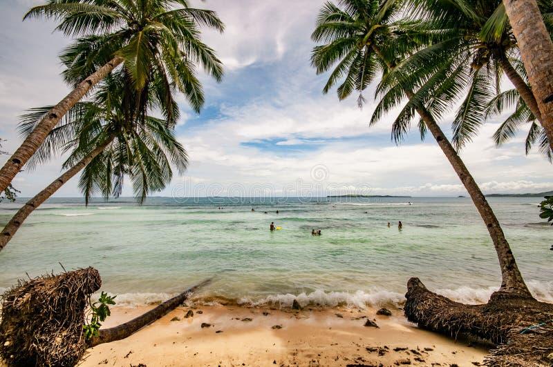 Caçando para fora ondas no paraíso tropical de Siargao, Filipinas imagens de stock royalty free