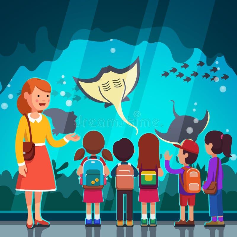 Caçoa crampfish de observação na excursão do oceanarium ilustração stock