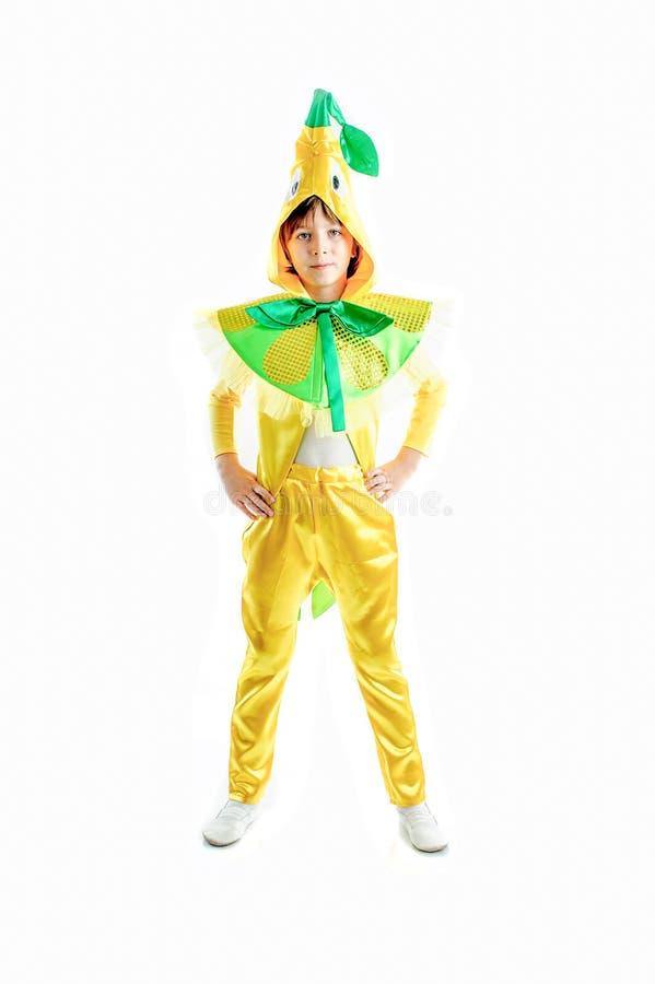 Caçoa o traje do carnaval foto de stock royalty free