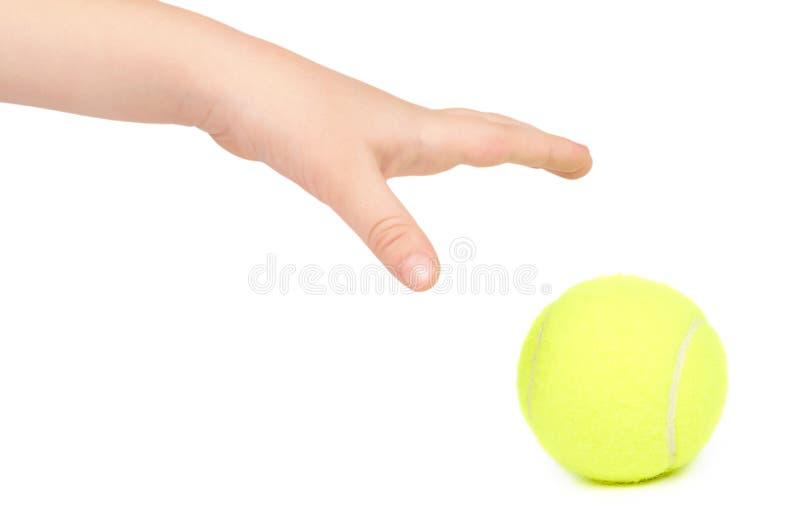 Caçoe a bola de tênis da posse à disposição, isolado no fundo branco fotografia de stock