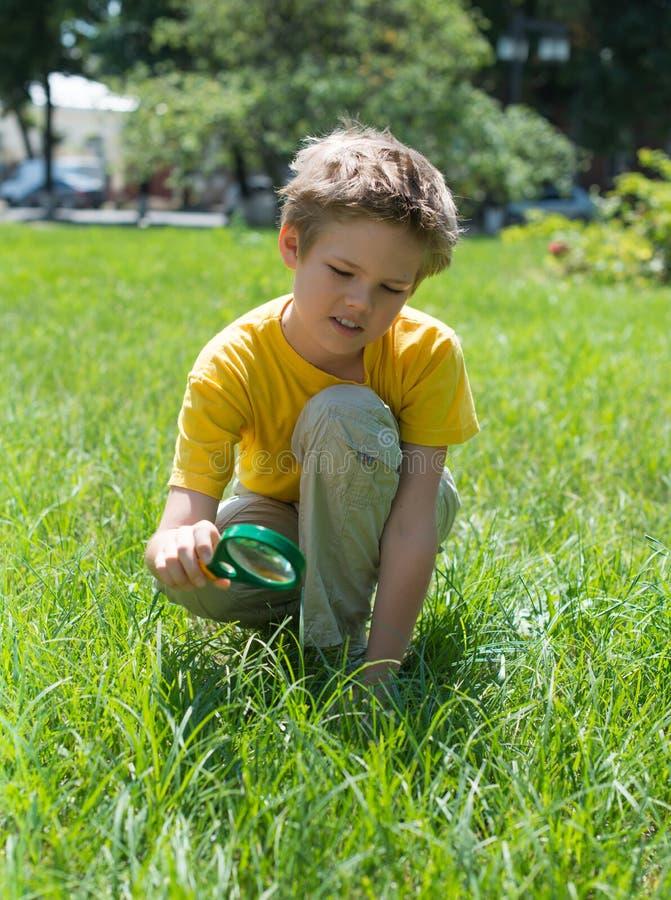 Caçoe no parque que olha a grama com uma lupa Menino bonito que faz experiências fora imagem de stock royalty free
