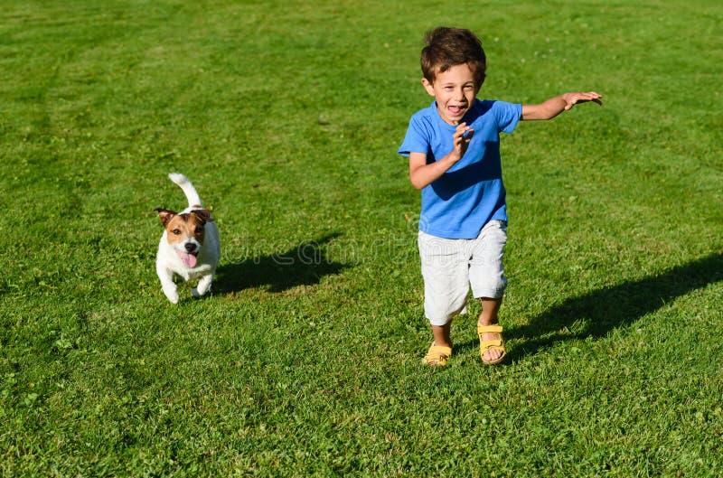 Caçoe o jogo com o cão no gramado da grama verde que precipita e que compete fotografia de stock