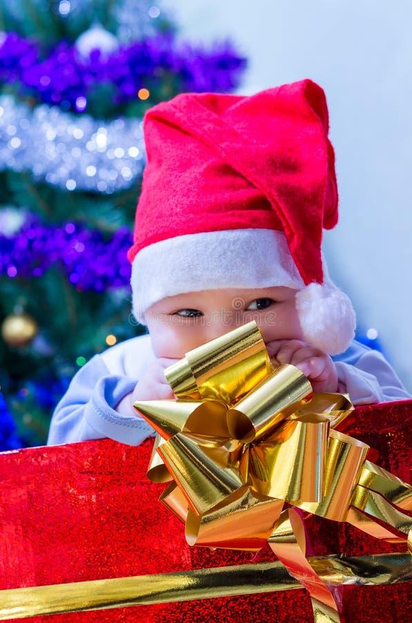 Caçoe sob a árvore um presente pelo ano novo imagens de stock royalty free