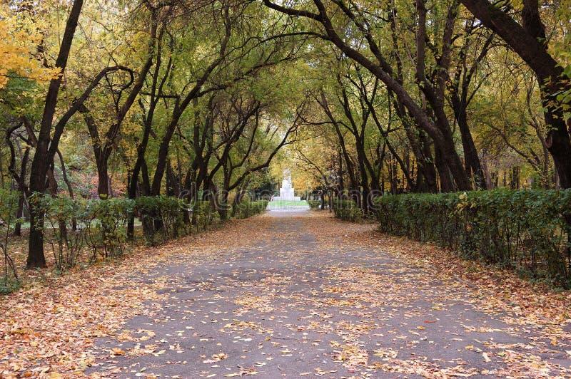 Download Caída de la hoja foto de archivo. Imagen de otoño, hoja - 1294026