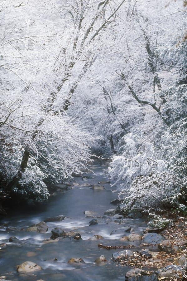 Caída de la nieve a lo largo del pequeño río de la paloma imagenes de archivo