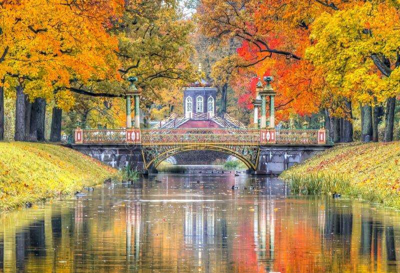 Caída de oro en el parque de Alexander, Pushkin, St Petersburg, Rusia foto de archivo libre de regalías