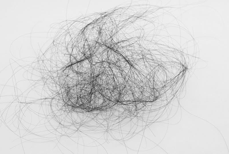 Caída del pelo en el fondo blanco imagen de archivo libre de regalías