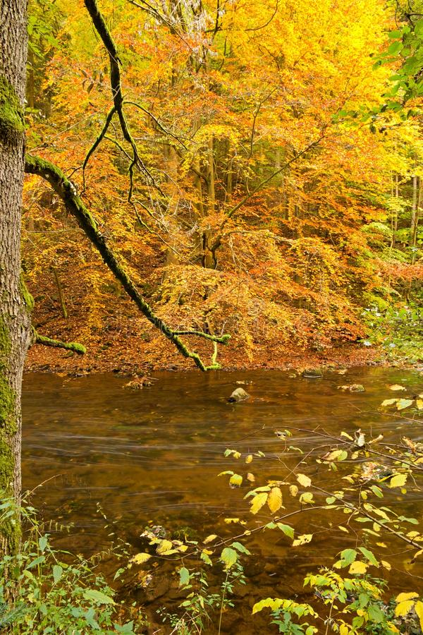 Caída del río fotografía de archivo libre de regalías