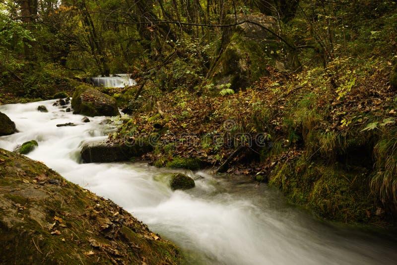 Download Caída Del Río Y Del Agua En El Valle Jiuzhaigou Imagen de archivo - Imagen de montañas, río: 64203313