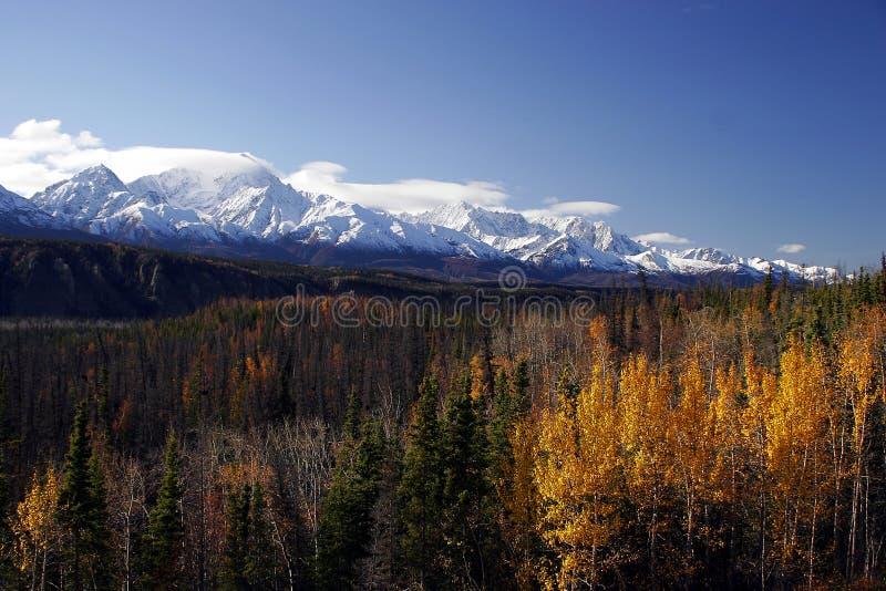 Caída en Alaska imagen de archivo libre de regalías