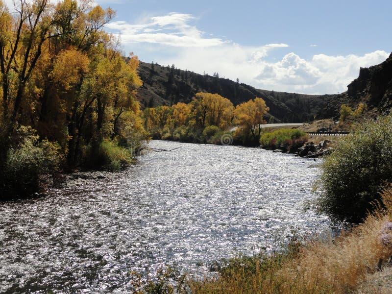 Caída en Colorado imagen de archivo