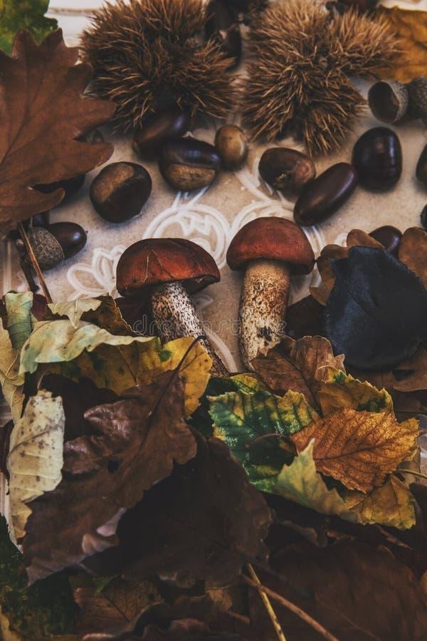 Caída en la tabla con con las frutas del otoño fotografía de archivo libre de regalías