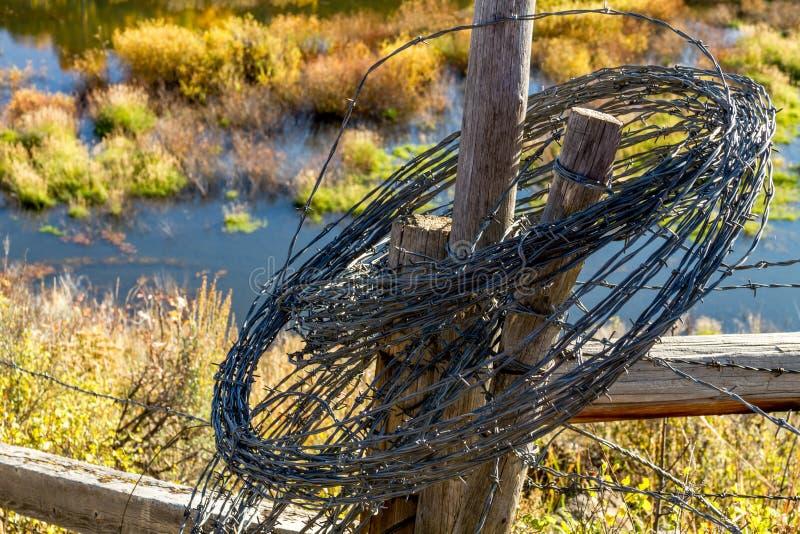 Caída en Steamboat Springs Colorado imagen de archivo libre de regalías